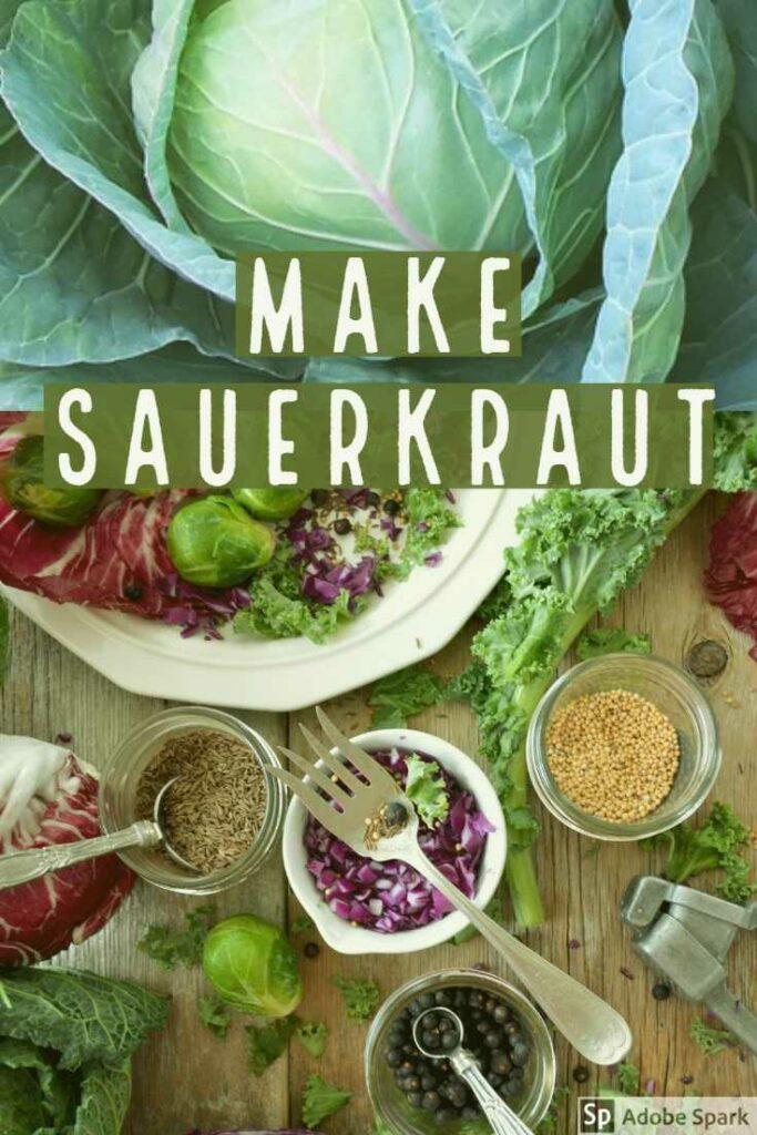 Sauerkraut recipe image